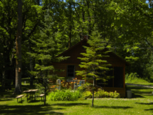 Cabin1outsideviewsummerweb